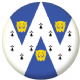 Shropshire Council Flag 25mm Pin Button Badge